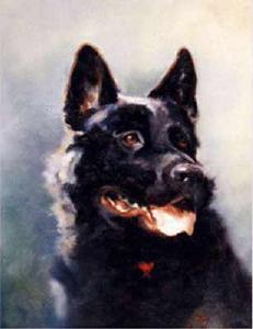 Lyn-Beaumont-artist-Dogs-Kurt-40x50cm