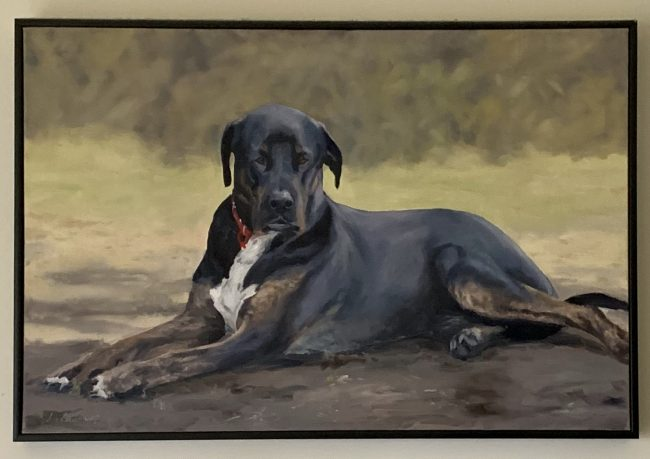 lyn-veaumont-equine-artist-oil-painting-horses-dogs