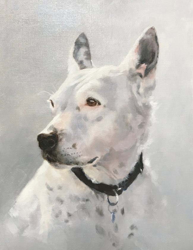 lyn-beaumont-equine-artist-dogs-turtle-50x60cm-commission