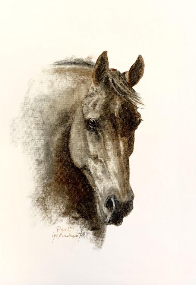 Lyn-Beaumont-artist-Oil-Sketches-Finn-30x40cm