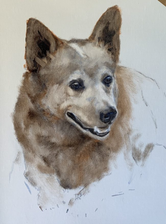 Lyn-Beaumont-artist-Oil-Sketches-The-Bear-30x40cm-equine